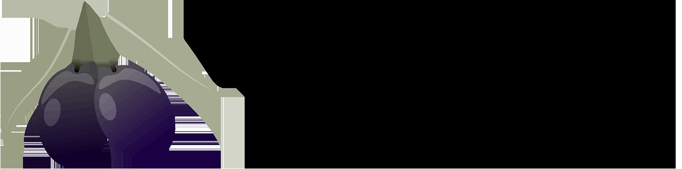 Vivaio Cecchi - Olivi in vaso